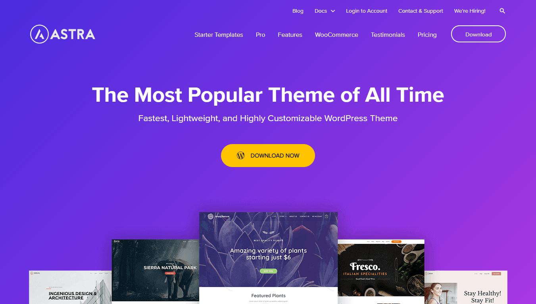 Astra theme homepage